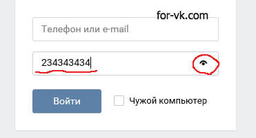 предпросмотр пароля при авторизации в ВК